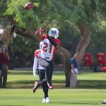 Patrick Peterson Re-Introduces Himself At...